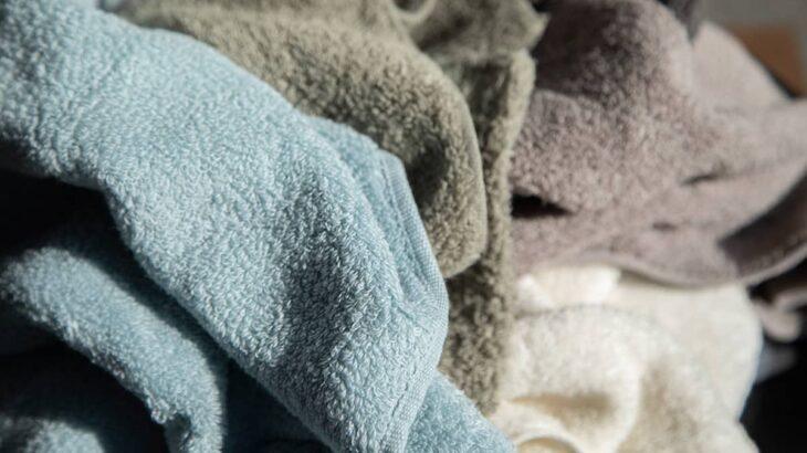 【まとめ】育てるタオルのカラーは優しい色合い【おすすめはどれ?】