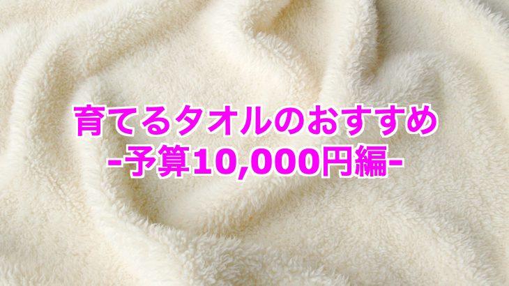 [育てるタオル]予算10000円で探す!おすすめアイテム5つは?