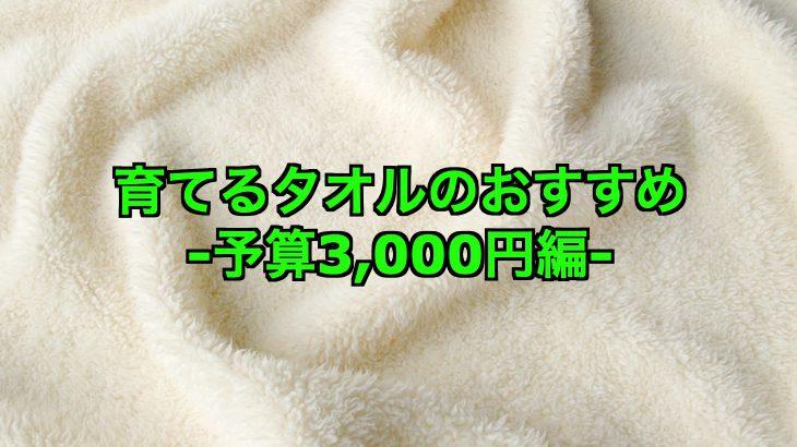 [育てるタオル]予算3000円で探す!おすすめアイテム3つは?