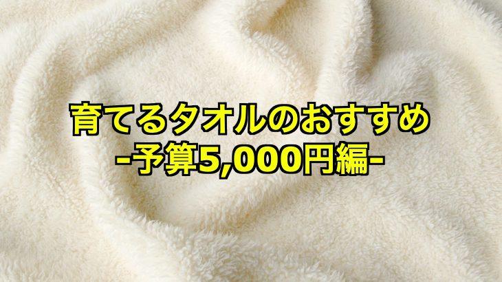 [育てるタオル]予算5000円で探す!おすすめアイテム4つは?